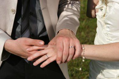 Srečanje zakonske skupine
